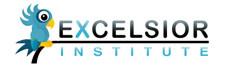 Excelsior Institute